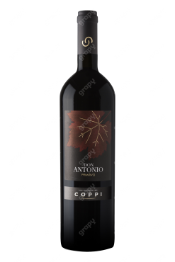 coppi primitivo don antonio