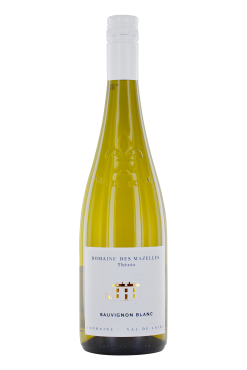Sauvignon Touraine Guy Allion