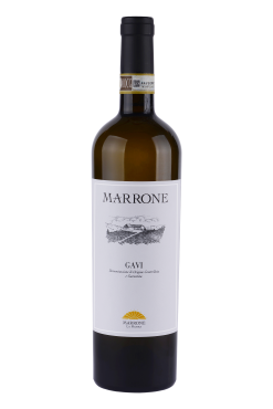 gavi docg marrone